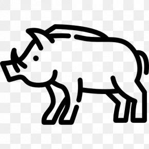 Wild Boar - Wild Boar Clip Art PNG