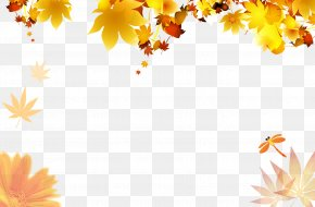 Autumn Leaves - Autumn Poster Maple Leaf PNG