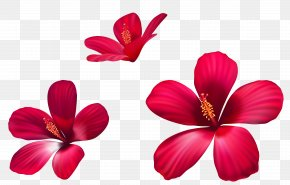 Exotic Pink Flowers Clipart Image - Pink Flowers Clip Art PNG