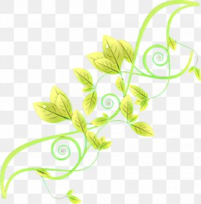 Pedicel Plant Stem - Leaf Green Plant Flower Plant Stem PNG