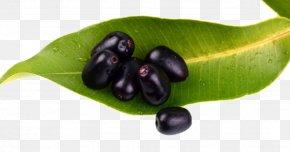 Jamun Java Plum Transparent Background - Java Plum Fruit Gulab Jamun Frutti Di Bosco PNG