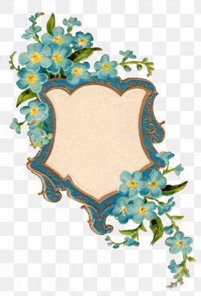 Forget Me Not Picture - Display Resolution Clip Art PNG