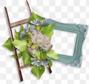 Photography Molding - Cut Flowers Picture Frames Floral Design Clip Art PNG