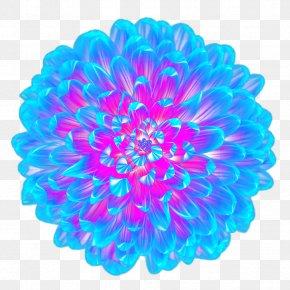 Cool Blue Flower Top View - Light Blue Flower PNG