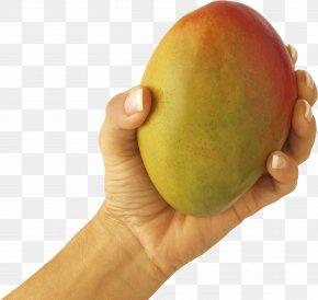 Mango In Hand Image - Smoothie Juice Mango Green Tea Ripening PNG