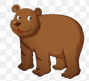 Vector Brown Bear Material - Brown Bear Cartoon Clip Art PNG