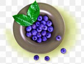 Blue Simple Plate Blueberry Decoration Pattern - Grape EatBetter Srl Blueberry PNG