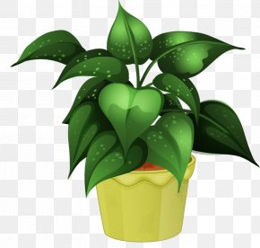 Flower Pot - Houseplant Flower Cultivo PNG