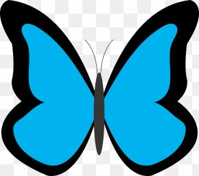 Butterfly Clip Art PNG