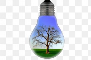 Bulb Trees - Electricity Slogan Energy Conservation Electric Light PNG