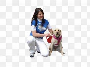 People - Dog Walking Puppy Pet Sitting PNG