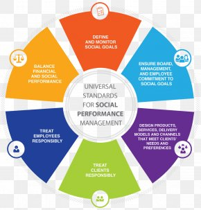 Social Media - Performance Management Project Management Professional Social Media Organization PNG