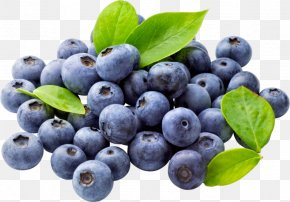 Blueberry - Blueberry Food Fruit Clip Art PNG
