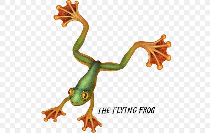 Tree Frog Amphibian True Frog Flying Frog, PNG, 600x518px, Tree Frog, American Green Tree Frog, Amphibian, Animal, Animal Figure Download Free