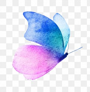 Butterfly - Butterfly Watercolor Painting Image Royalty-free PNG