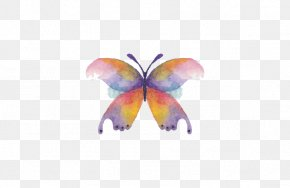 Butterfly - Butterfly Watercolor Painting Drawing PNG