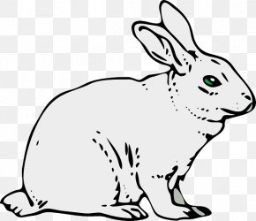 Elephant Rabbit - The Velveteen Rabbit Easter Bunny Clip Art PNG