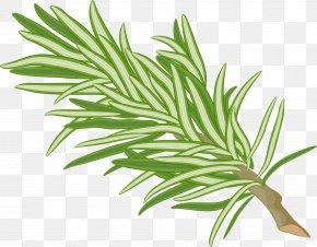 Blacktea Vector - Vector Graphics Clip Art Illustration Image PNG
