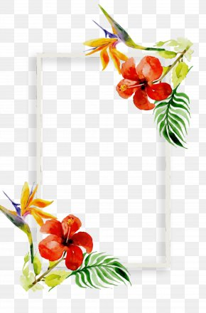 Picture Frame Plant - Picture Frame PNG