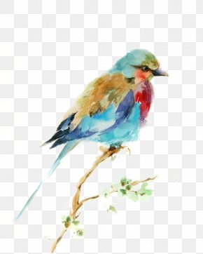 Birds - Bird Watercolor Painting Drawing Printmaking PNG