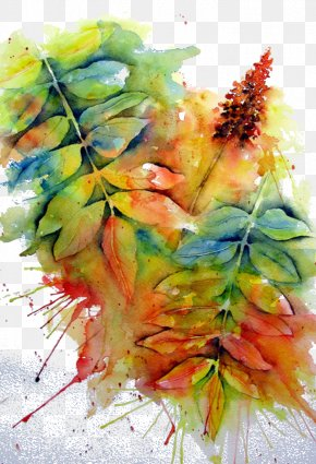 Hand-painted Plants - Watercolor Painting Drawing Art Illustration PNG