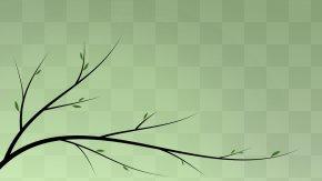 Vector Tree - Tree Branch Clip Art PNG