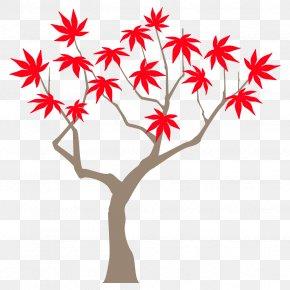 Plant Stem Branch - Autumn Maple Tree Maple Tree Autumn Tree PNG