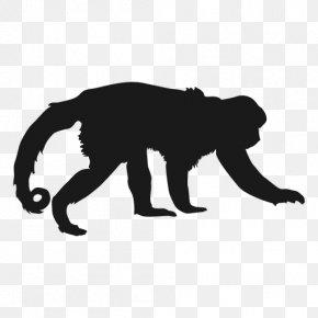 Black Monkey - Gorilla Silhouette Photography PNG