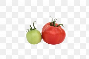 Red Tomatoes - Tomato Vegetarian Cuisine Food Red PNG