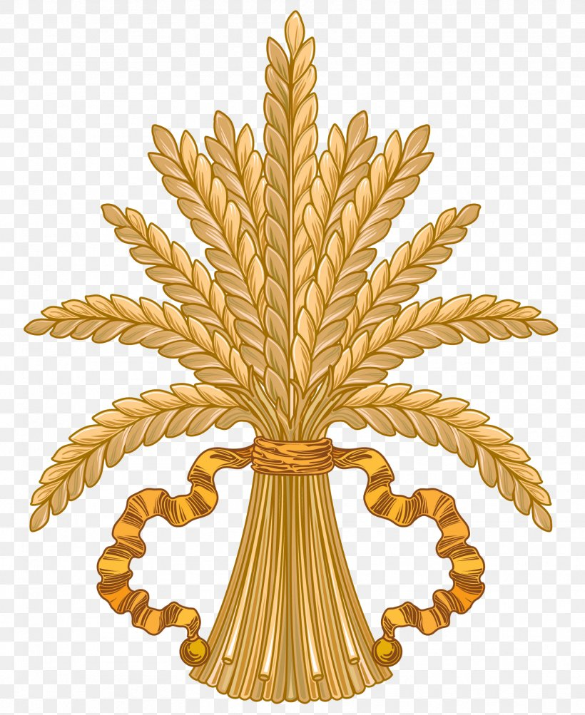 Wheat Caryopsis Clip Art, PNG, 1772x2168px, Wheat, Bran, Cereal, Commodity, Ear Download Free