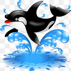 Dolphin - Baby Orca Killer Whale Dolphin Clip Art PNG