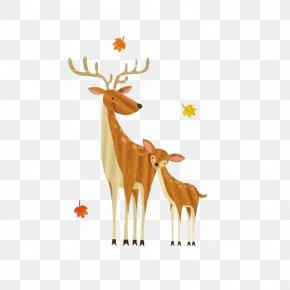 Baby Moose - Formosan Sika Deer Watercolor Painting Reindeer Drawing PNG