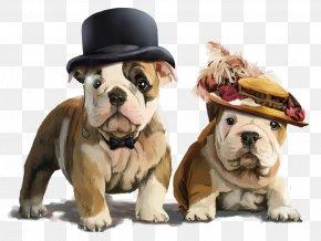 Cute Dog - French Bulldog Puppy Drawing PNG