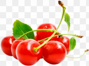 Red Cherry Image, Free Download - Cerasus Cherry Tutti Frutti PNG