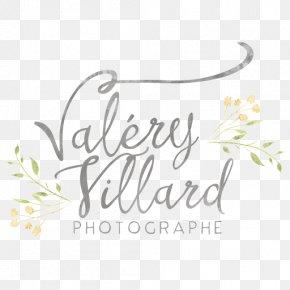 Design - Floral Design Brand Logo Font PNG