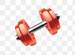 Wheel Exercise Equipment - Weights Dumbbell Exercise Equipment Wheel PNG
