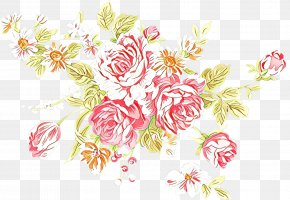Pedicel Plant - Pink Flower Cartoon PNG