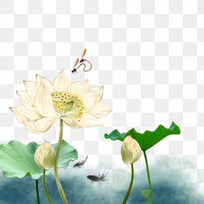 Lotus - Mid-Autumn Festival Mooncake Nelumbo Nucifera National Day Of The Peoples Republic Of China Poster PNG