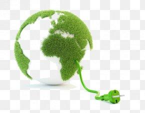 Logo Annual Plant - Green Leaf Logo PNG