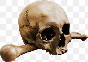 Skull Crossbones - Human Skull Calavera Bone Skeleton PNG