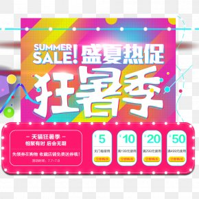 Day Cat Summer Summer Season - Poster Summer Promotion PNG