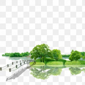 Beautiful Green Environment - Green Nature Beauty Environment PNG