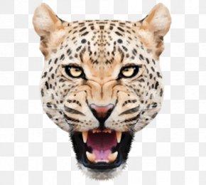 Angry Leopard Head - Leopard Jaguar Felidae Tiger PNG