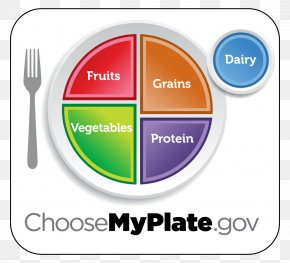 Healthy Meal - ChooseMyPlate Food Group Healthy Diet MyPyramid PNG