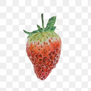 Strawberry Hand Painting Material Picture - Painting Red Amorodo Accessory Fruit Computer File PNG