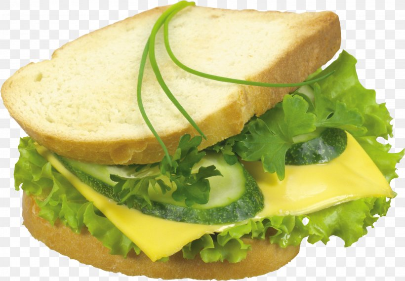 Hamburger Cheese Sandwich Toast Sandwich Breakfast Sandwich Cheesesteak, PNG, 2809x1950px, Hamburger, Breakfast Sandwich, Butterbrot, Cheese, Cheese Sandwich Download Free