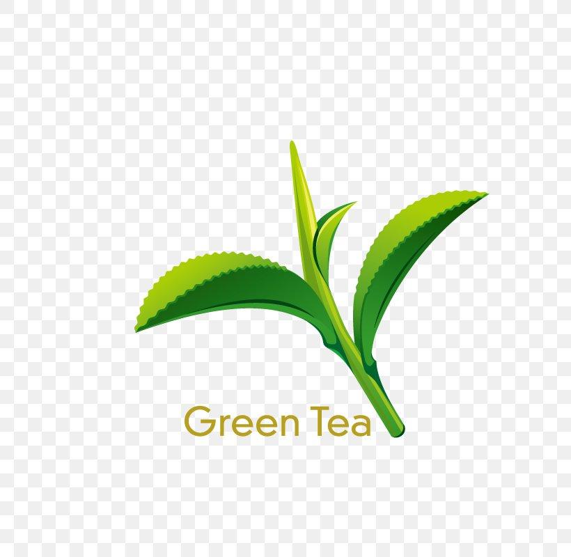 Green Tea Coffee Juice Lemonade, PNG, 800x800px, Tea, Black Tea, Brand, Camellia Sinensis, Coffee Download Free