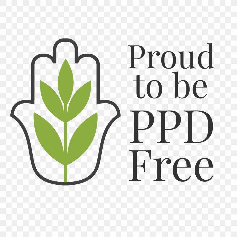 Logo Leaf Brand Font Plant Stem, PNG, 1600x1600px, Logo, Blog, Brand, Flower, Green Download Free