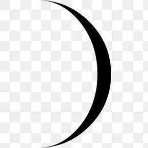 Lunar Phases - Lunar Phase Lunar Calendar Moon PNG