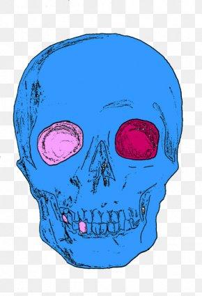 Cranial Skeleton People - Skull Human Skeleton Homo Sapiens PNG